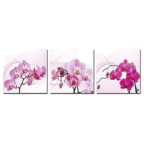 wonzom Orchidée Rose Peinture sur toile encadrée Art Mural sur toile 3pièces/set entièrement prêt à accrocher Fleur 30,5x 30,5cm