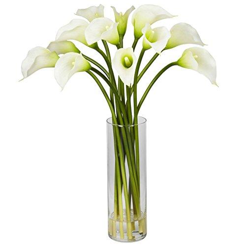 Wingbind 100 Pcs Rare Coloré Calla Lily Graines De Fleurs à Cultiver, Accueil Jardin Plantes Graines DIY Bonsaï