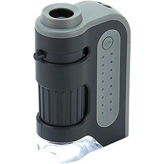 Carson MicroBrite Plus 60 -120x LED Lighted Pocket Microscope