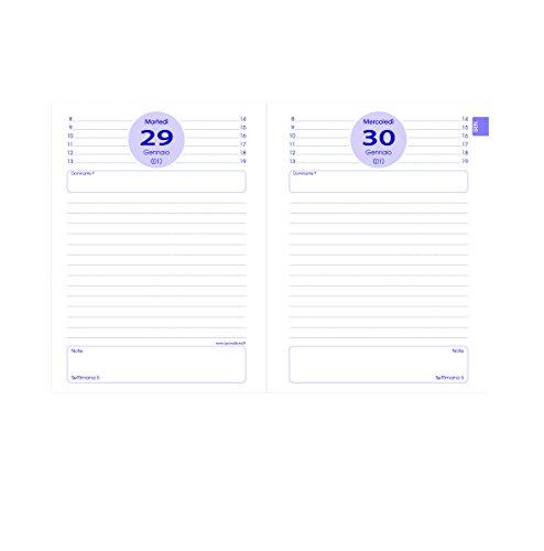Quo Vadis 02900620MQ Anno 2020 TEXTAGENDA IT Ricambio - 12x17cm - Giornaliera - Ago/Ago ANNO SCOLASTICO-ACCADEMICO