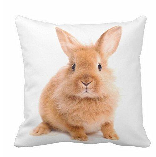 Juzijiang Cushion Cover Throw Pillow case Girl Hug Easter Bunny Rabbit Candy Eggs Tulip Flower Garden Joyful Celebration Both Sides Image zipper16X16 inch Bunny Sexy Velvet
