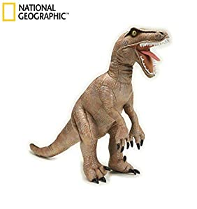 Ngs Velociraptor Grande 48 Cm.