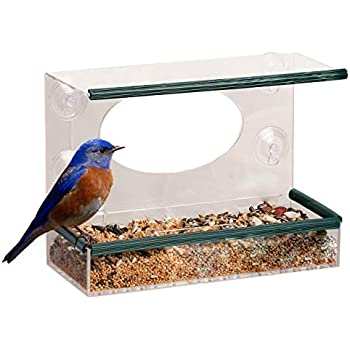 Red Earth Naturals Window Bird Feeder Squirrel Proof See