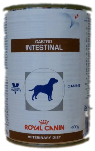 Royal Canin Veterinary Diet Wet Dog Food canine Gastrointestinal 400 g (confezione da 12)
