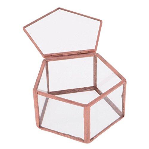 OEM Geometrisches Glas Terrarium F�nfeck Box Schmuckschatulle Glas Sukkulente Pflanzen Pflanzgef�� Deko Tischplatte Sukkulente Moos Blumentopf