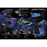 Star Trek Poster Famous Starfleet Ships Collage - Poster Großformat
