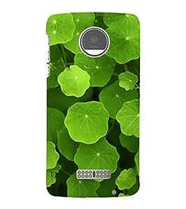Green Leaves 3D Hard Polycarbonate Designer Back Case Cover for Motorola Moto Z :: Motorola Moto Z Droid in USA
