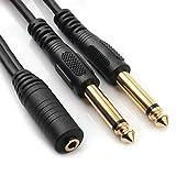 NANYI 3.5mm 1/8 pouce stéréo femelle vers deux câbles audio 6.35mm 1/4 pouce TS connecteur mâle, câble adaptateur Splitter Y et rallonge, 1,5 m (5FT)
