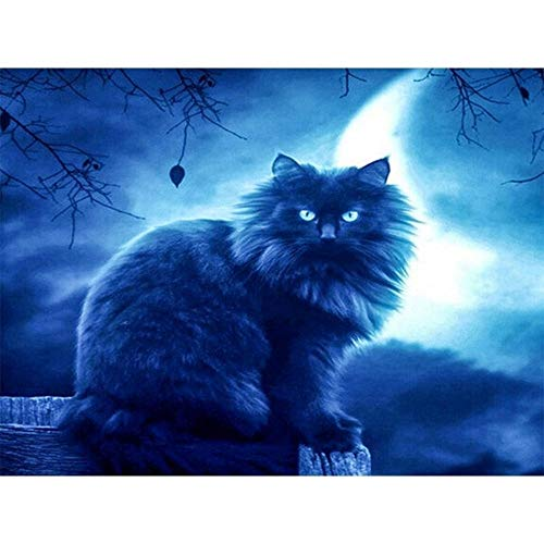 Mengdan DIY 5d Diamant malerei Stickerei Tiere Halloween cat Dekoration Hause volle Quadrat Bohrer Bild von Strass, 40x50cm