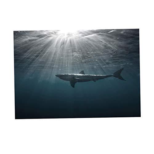 KESOTO Hai Wandaufkleber Aquarium Rückwand Aufkleber Aquarienrückwand Fisch Tank Hintergrund Dekor - XS