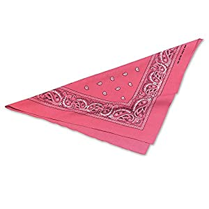 Pink COWBOY COWGIRL BANDANA WESTERN FANCY DRESS (disfraz)