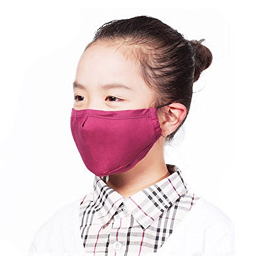 Kinder PM2.5 Anti-bakterielle Gesichtsabdeckung Mundmaske + 3 Filter, Rosen-Rot