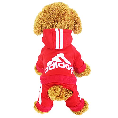 Chándal para perro/gato Lifewheel, chaqueta con capucha, ropa de exterior
