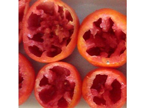 Rote Tomate zum Füllen - Burgess - 10 Samen