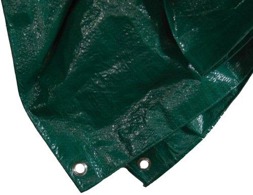 Siena Garden 671086 Telone protettivo in polietilene 6x8 m colore: Verde