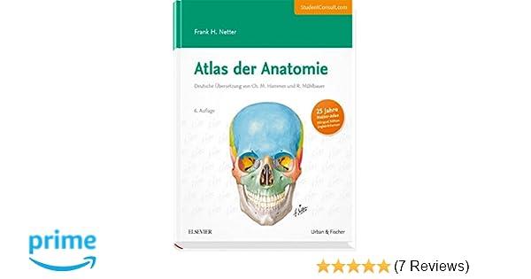 Beste Spürt Der Anatomie Und Physiologie Galerie - Anatomie und ...