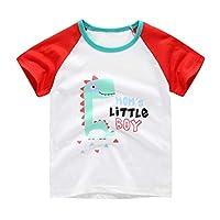 Tensay Toddler Baby Kids Boys Girls Cartoon Dinosaur Animal Print Patchwork Short Sleeve Summer T-Shirt Tops Clothes