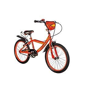 41AUhhCz0wL. SS300 F.lli Schiano Flame Bicicletta