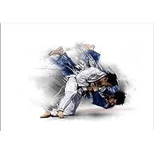 Cuadro sobre lienzo 100 x 70 cm: judo de tom - cuadro terminado, cuadro sobre bastidor, lámina terminada sobre lienzo auténtico, impresión en lienzo