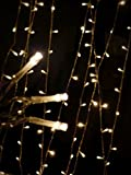 Proxima Direct 100/200/300/400/500 LED String Fairy Lights for Christmas Tree Party Wedding Events Garden (8 Lighting Modes, memory function) - Top Quality (Warm White, 100 LED) Bild 8