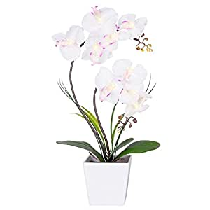 Homeseasons avec LED Fleur artificielle Arrangement-battery à pot à orchidée avec 9 lumières