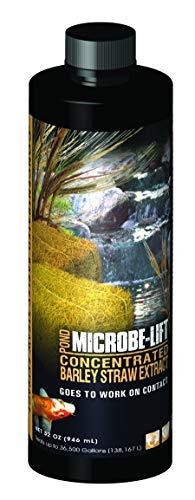 Microbio Lift 900ml Estanque extracto Concentrado