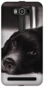 The Racoon Grip Puppy eyes hard plastic printed back case / cover for Asus Zenfone 2 Laser ZE550KL