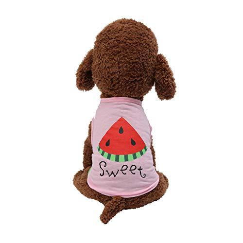 Haustierweste Sommer Kleidung Ultradünn Drucken Sweatshirt Hunde T-Shirt Katzen Puppy Cool Weich Cozy Atmungsaktiv Für Klein Mittel Groß Bichon Teddy
