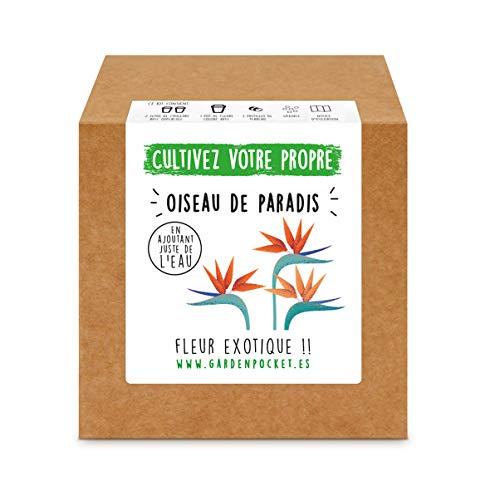 Garden Pocket - Kit de Culture de OISEAU DE PARADIS