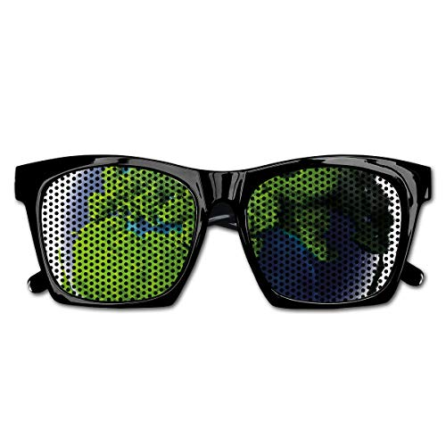 EELKKO Mesh Sunglasses Sports Polarized, World Covered with Lush Green Forest Grass and Blue Waters Eco Nature Concept,Fun Props Party Favors Gift Unisex