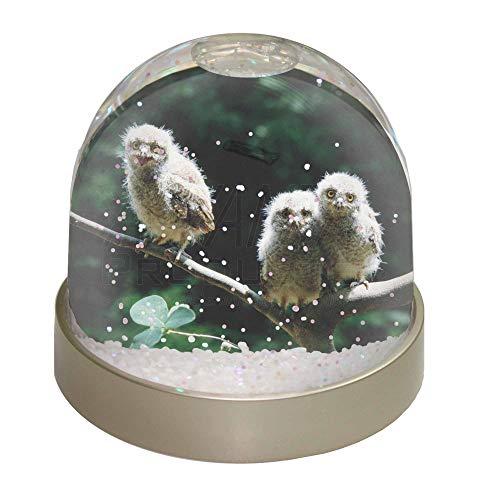 uf AST Schneekugel Snow Dome Geschenk, Mehrfarbig, 9,2x 9,2x 8cm ()