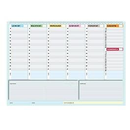 Planner settimanale 42×30 – agenda planner da tavolo perpetua – True Colors