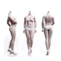 1/6 Mannequin Steel Skeleton Micro Fat Female Body Female Body Super Flexible Seamless with Metal Skeleton (wheat-colored)