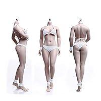 1/6 Mannequin Steel Skeleton Micro Fat Female Body Female Body Super Flexible Seamless with Metal Skeleton