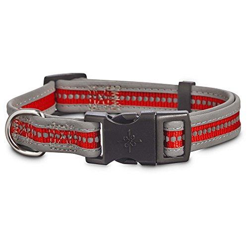 good2go Reflektierende Verstellbare Hundehalsband in Rot, Small, Rot (Reflektierende Halloween Halsbänder)