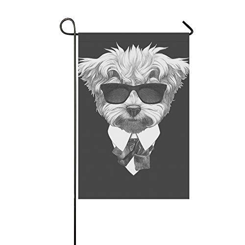 Dekorative Outdoor Double Sided Portrait maltesischen Pudel Anzug handgezeichnete Garten Flagge, Haus Hof Flagge, Garten Hof Dekorationen, saisonale Willkommen Outdoor Flagge 12 X 18 Zoll Frühling So -