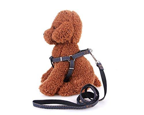 starker-verstellbarer-denim-hundegeschirr-aus-nylon-leine-set-keine-pull-pet-hundegeschirr-halsband-