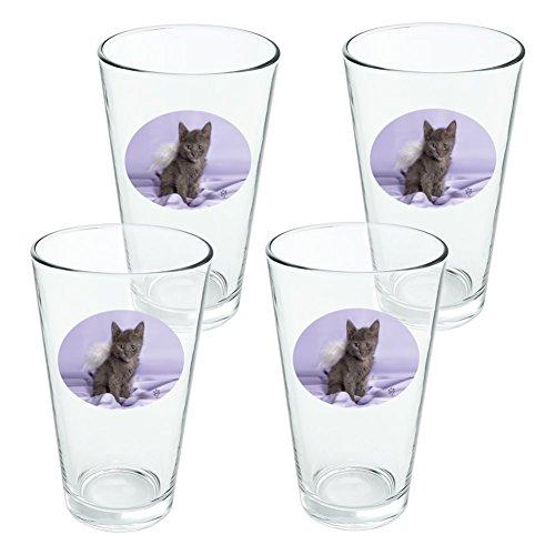 Domestic Shorthair Chaton Ailes d'ange Violet satiné fantaisie 453,6 gram Pinte à boire en verre trempé - Lot de 4