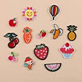 #3: 13Pcs Embroidered Fruit Sew Iron On Patches Badge Hat Bag Fabric Applique Craft