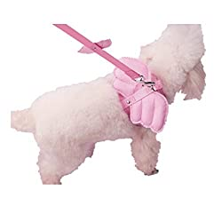 Cute Angel Small Pet Dog Leads and Collars Set