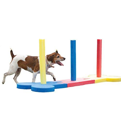 Rosewood 02495 Agility-Slalomstangen für kleine Hunde