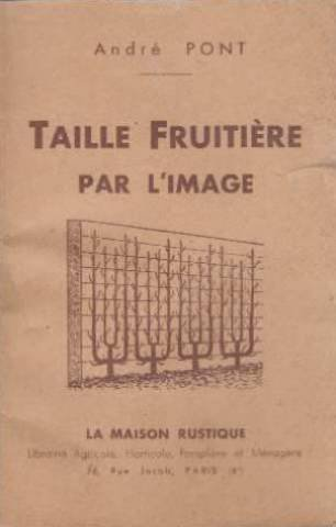 Taille fruitière par l'image.