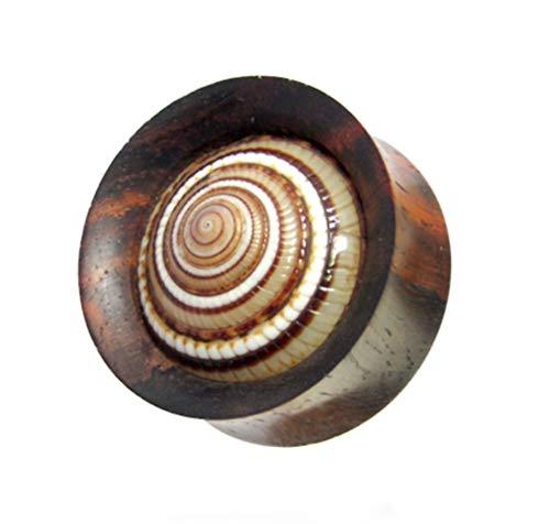CHICNET Damen Herren Ohr Plug Flesh Tunnel Piercing Dehner aus Holz und Sonnenuhrschnecke Muschel, double flared, Handarbeit, 4mm bis 22mm