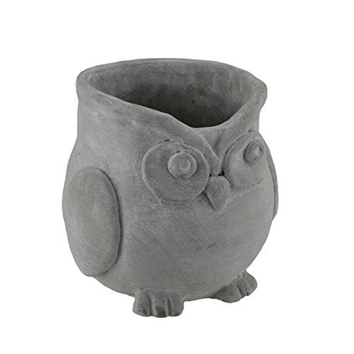 Finitura grezza scultoreo cemento Owl Planter 71/2inch diametro