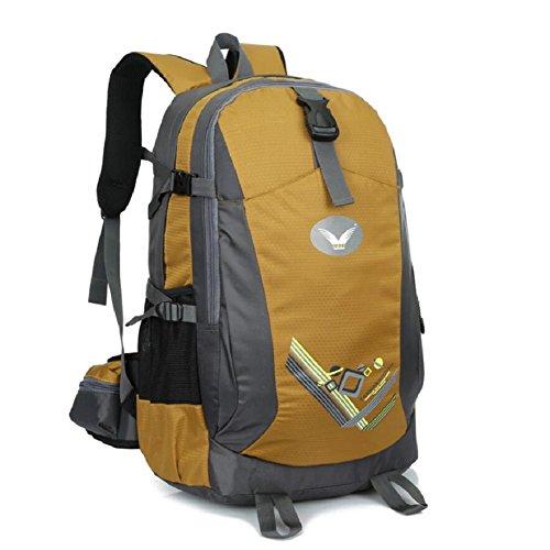 LF&F Backpack Neue Hochwertige Nylon Outdoor Travel Bergsteigen Rucksack Fitness Sport Radfahren Camping Party GepäCk Tasche Mehrzweck-Student Tasche D