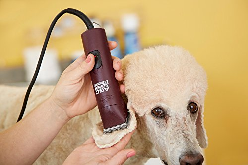 Andis Agc Super 2-Speed Professional Animal Clippers 2