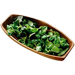 Premier Housewares - Fuente para servir ovalada (madera de acacia, 5 x 30 x 15 cm)