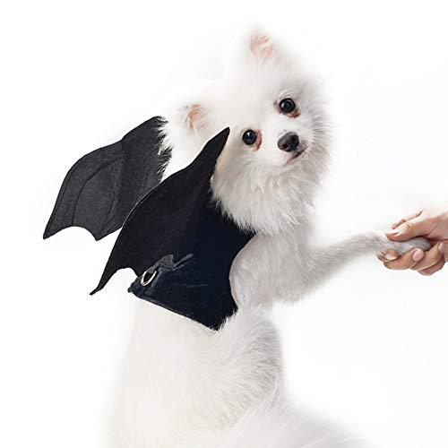 ostüm für Halloween, Fledermausflügel, Fledermaus, Flügel, Weste, Hundekostüm, für Kleine Hunde und Katzen, Schwarz (Keine Leine enthalten), M ()