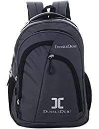 Dussledorf Polyester 20Liters Grey Laptop Backpack