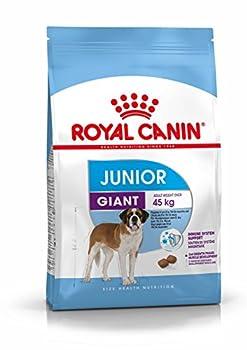 Royal Canin Giant Junior 31 - Nourriture pour jeune chien - Très grandes races - 15 kg